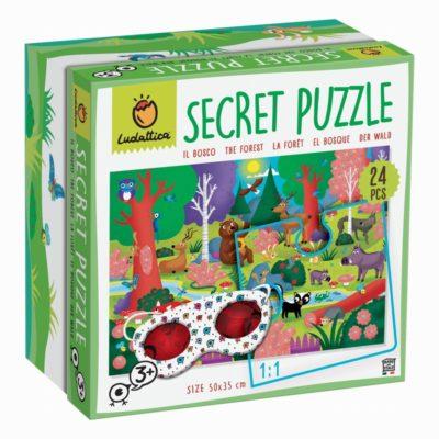 secret puzzle ludattica