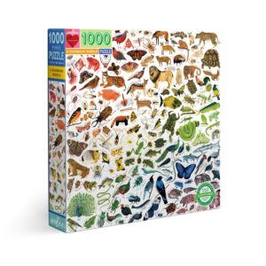 A Rainbow World, puzzle 1000 pièces