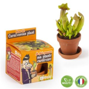 Graines de plantes carnivores à faire pousser – Pot 8 cm